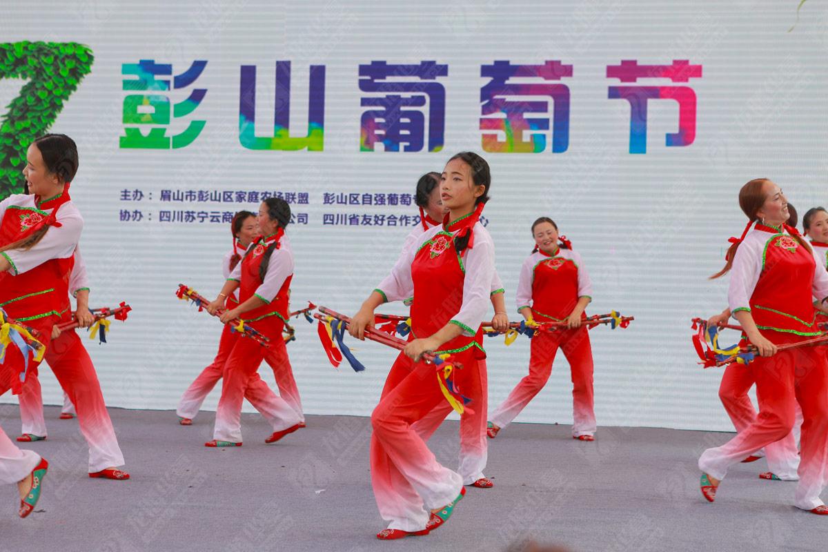 彭山葡萄节营销活动策划_成都葡萄节品牌营销策划公司