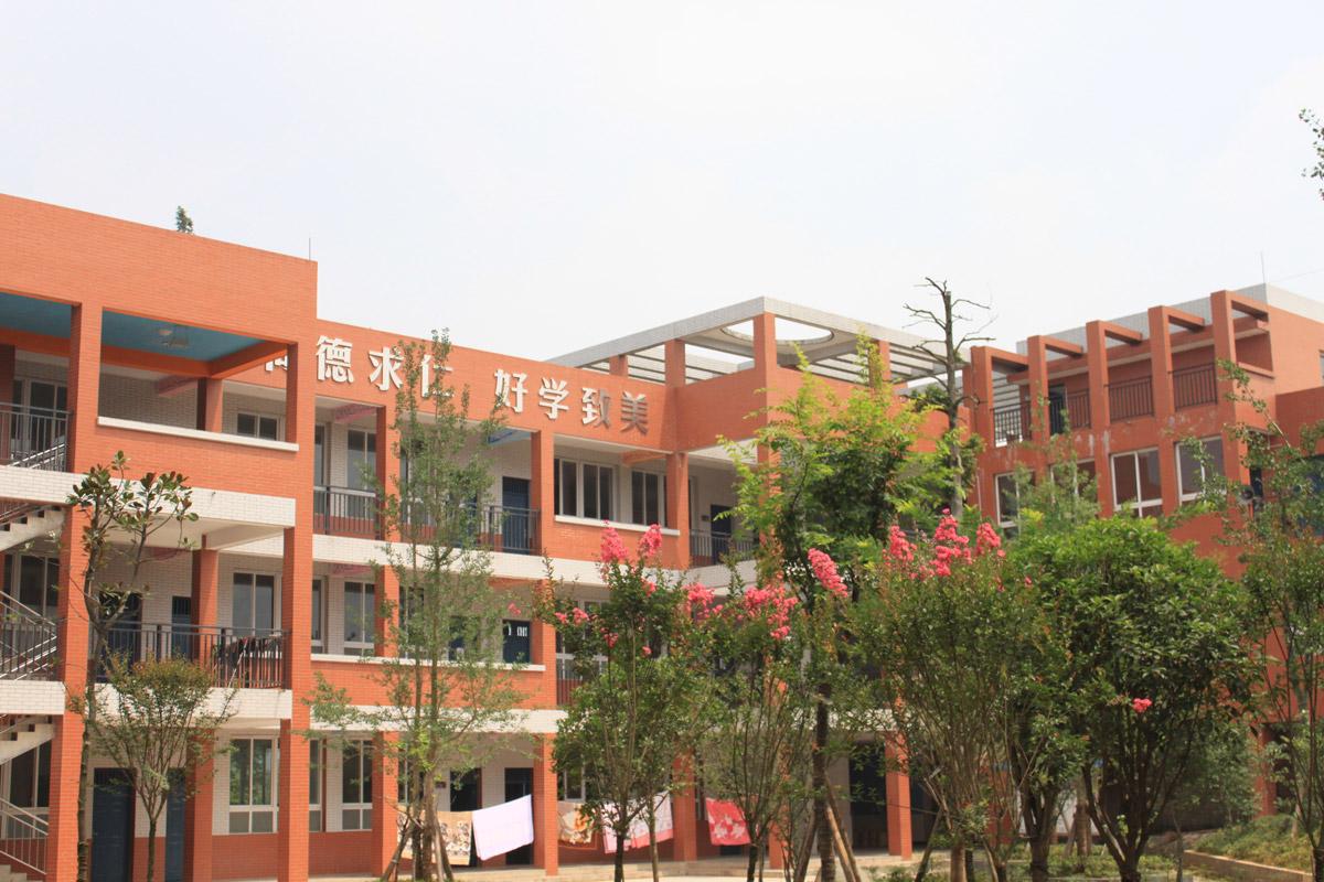 丹棱仁美小学校园文化设计_成都校园文化建设设计公司