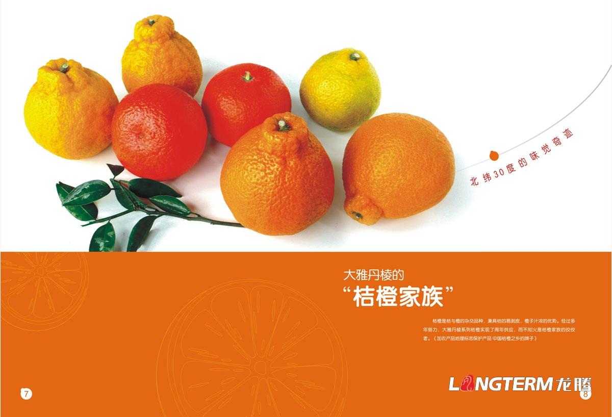 丹棱桔橙招商画册设计|丹棱县水果橘子橙子招商引资宣传册设计公司