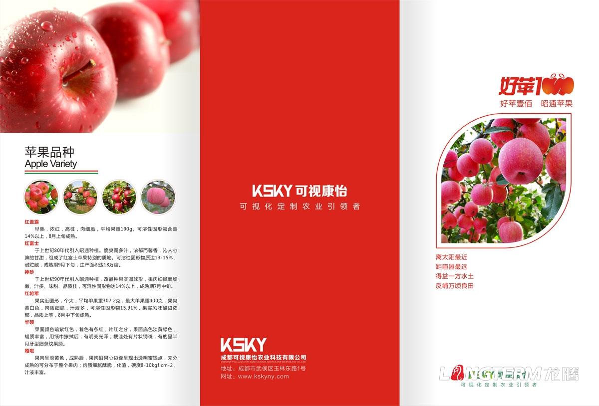 可视康怡苹果宣传三折页广告设计 水果苹果鲜果折页广告宣传物料设计