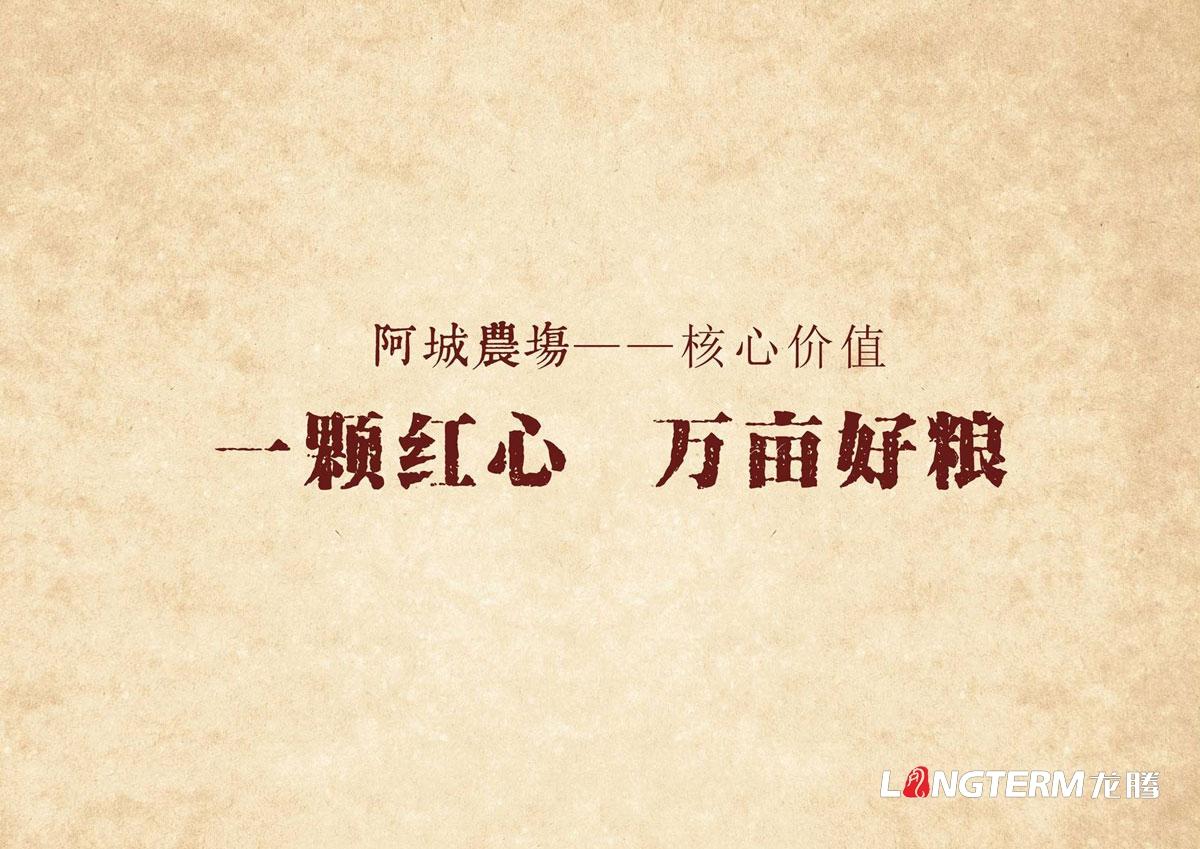 阿城农场有机稻花香米产品包装设计|成都大米产品文化梳理品牌形象包装设计公司