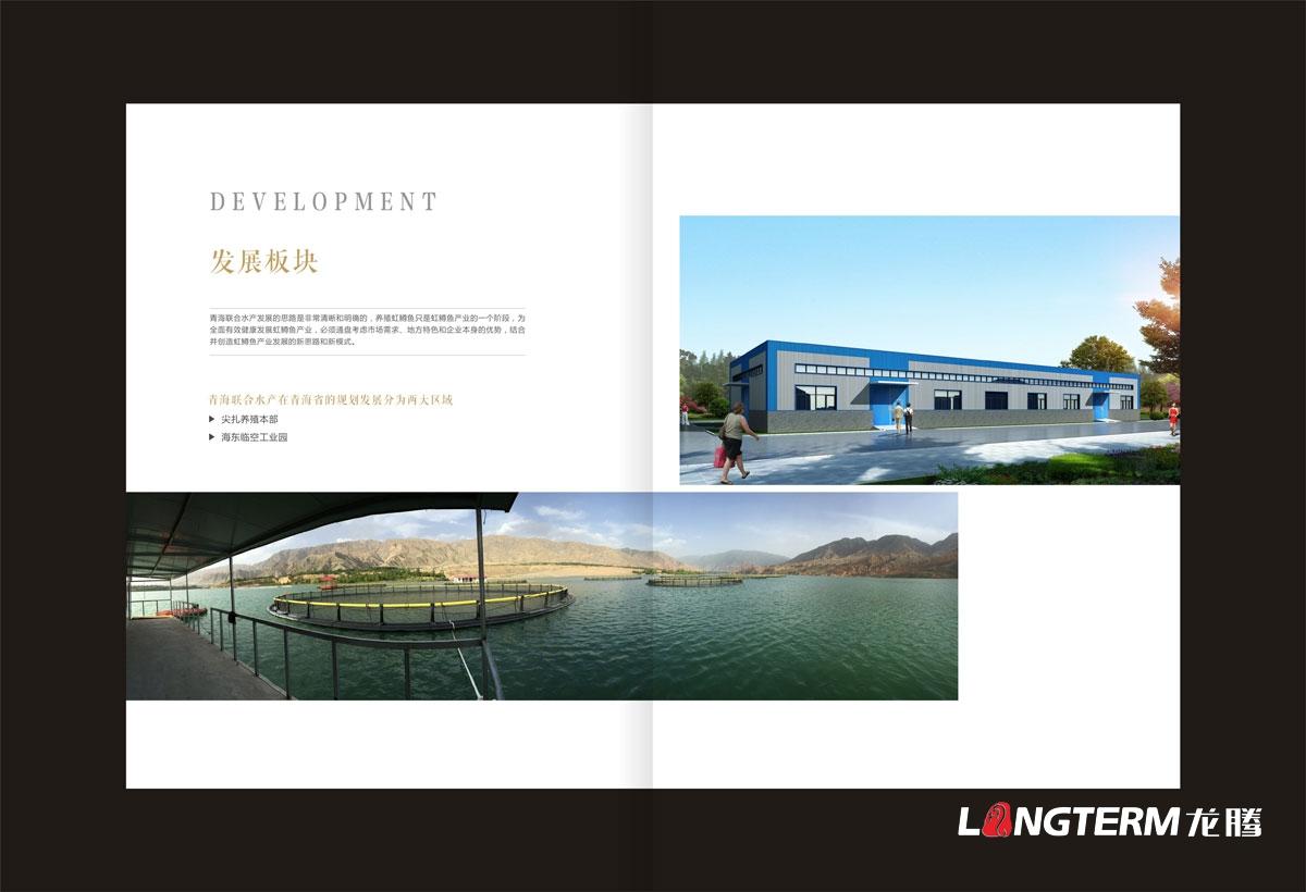 青海联合水产集团公司画册设计图片