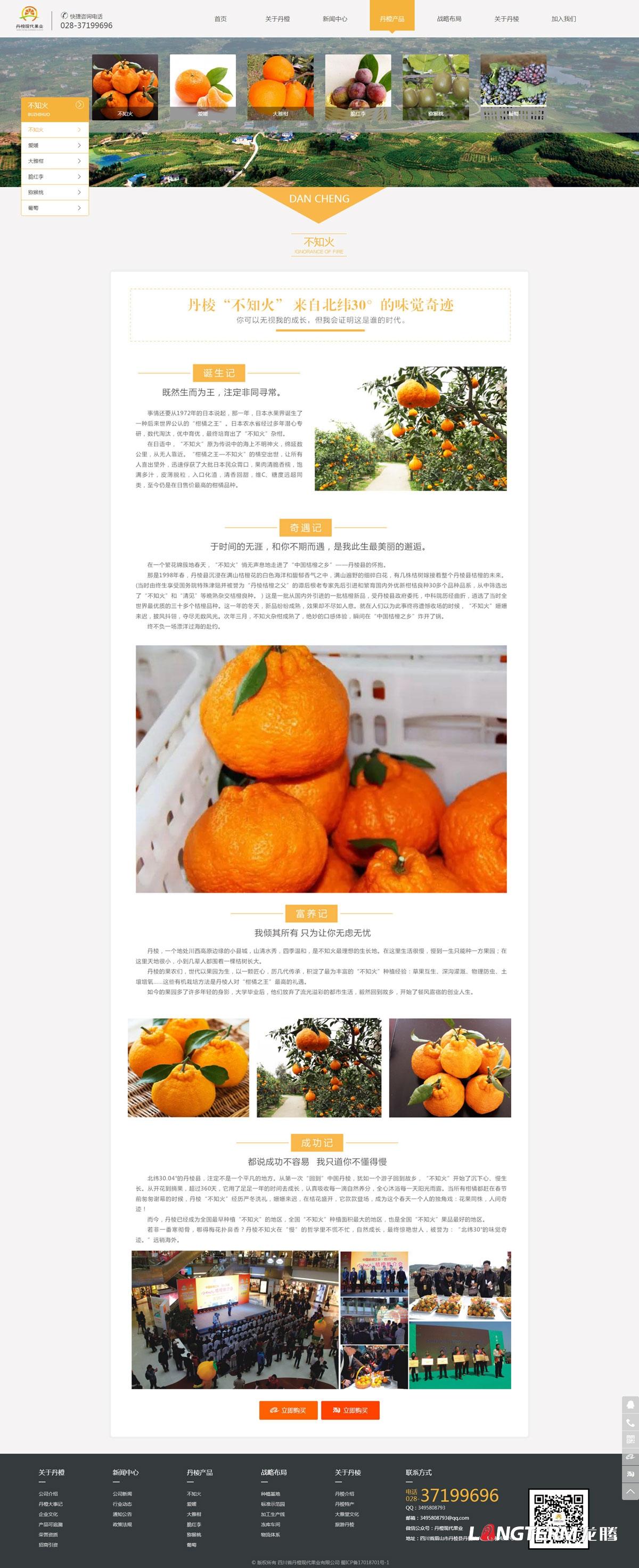 四川省丹橙现代果业有限公司官网设计|成都果业林业公司企业品牌形象网站设计制作建设开发