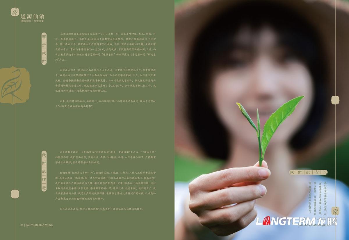道源仙翁茶业产品宣传手册设计_成都市大邑县茶叶产品宣传画册设计公司
