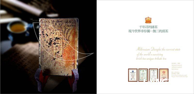 文君茶宣传画册设计