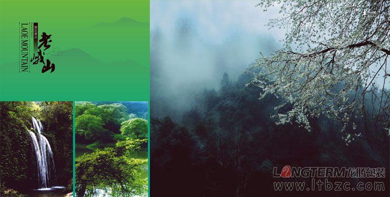 丹棱县宣传画册设计